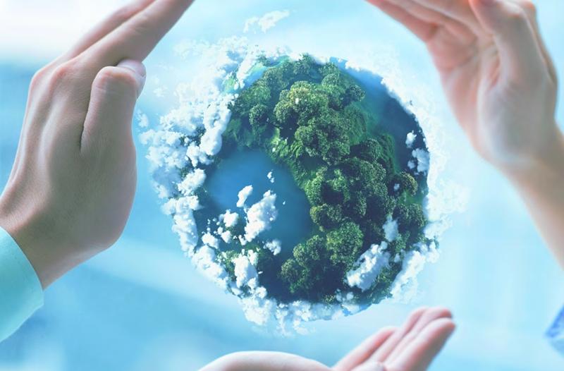 Négy szervezetet támogatna az Allianz