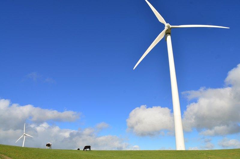 Út a zöld mozgalomtól az üzleti klímahatékonyságig
