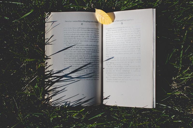 Europe Village: közös könyvet ír öt szerző a fenntarthatóságról